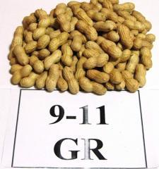 Packed peanuts