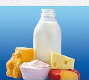 Fermented milk products, probiotic