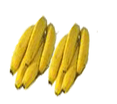 كمبوست الموز