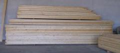 Birch parquet