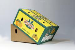 Carton boxes packaging machines
