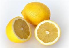 Bonsai lemon