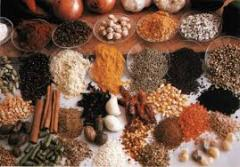 Spice extracts