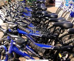 الدراجات والرياضة والسياحة
