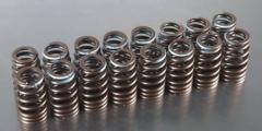 Springs for automobile valves