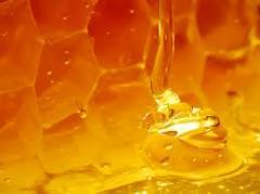 عسل النحلهو عبارة عن مادة غذائية هامة تحتوي...