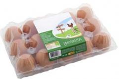 Eggs duck