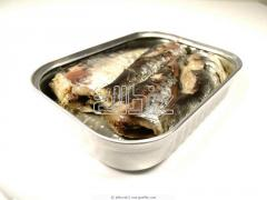 Canned fish in oil