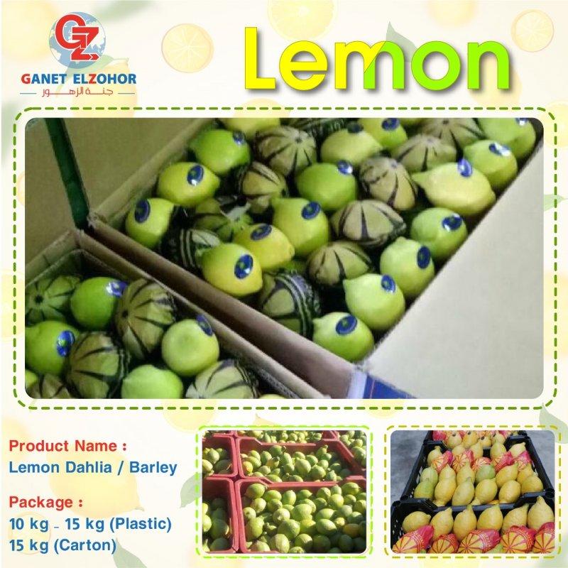 lemon_barley