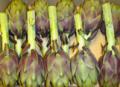 Fresh Artichoke (Whole)
