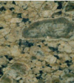 Yellow Verdy Marble