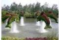 حدائق وحمامات سباحه