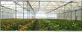 صوب زراعية متعددة