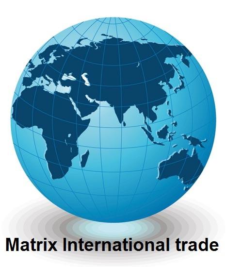 Matrix 4 International Trade, القاهرة