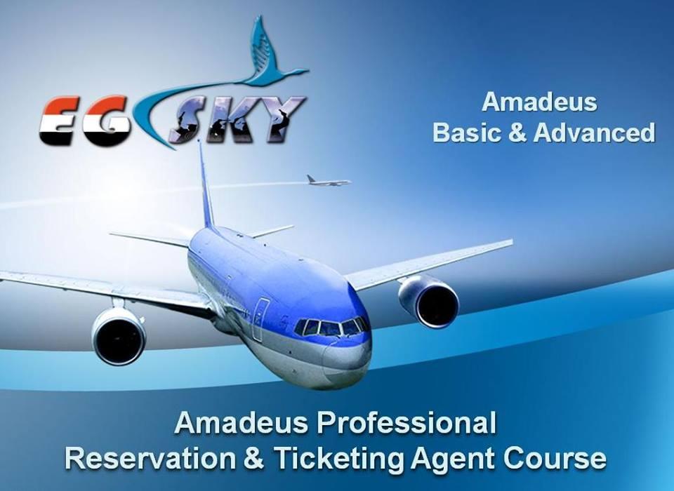 طلب  دبلومة حجز واصدار تذاكر الطيران للمستويين الأساسي والمتقدم (ايجي سكاي للتدريب بالأسكندرية