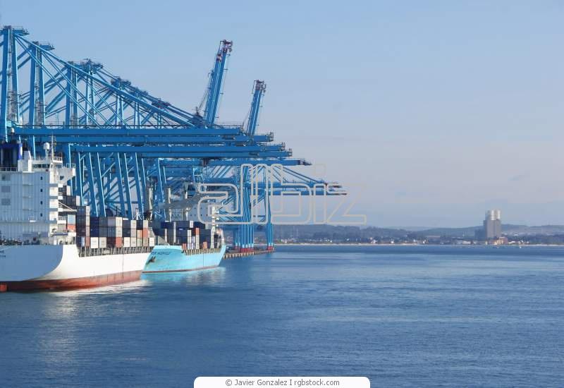 طلب Ocean Cargo