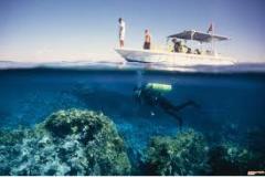 فوائد مياه البحر الاحمر
