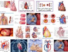 متخصصون ماهرون فى امراض ومشاكل القلب