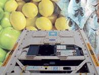 Construction of logistic plans of transportation