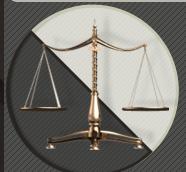 الخطوط الرئيسية للعمل وفقا لمتطلبات العميل وأحكام