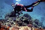 Sharm el Sheikh Diving Trips& Holidays