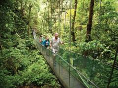 السياحة الخضراء