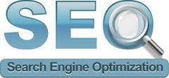 Site search engine optimization