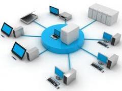 نظم الشبكات