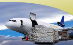 All Import and Export Freight Services