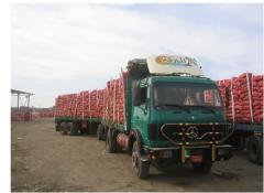 نقل المنتوجات الزراعية