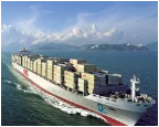 Services on organization of import