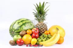 Expertise of fresh fruits and vegetables