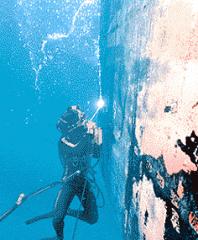 Marine ServiceProviding and  maintenance