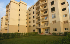 Sale of apartments in new buildings