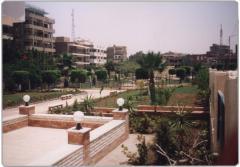 صيانة الحدائق