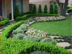 تنسيق حدائق للقرى