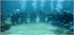 رحلات غوص تحت الماء