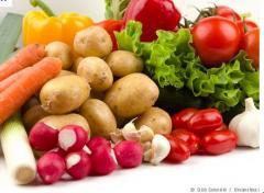 تصديرالخضروات المصرية الى اليونان