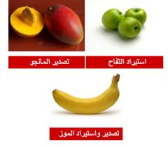 استيراد و تصدير الفواكه