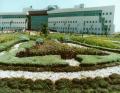 المركز الطبى الدولى