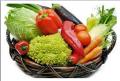 صادرات و توريدات المواد الغذائية