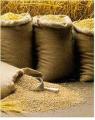 التوريدات العامة للمنتوجات الزراعية